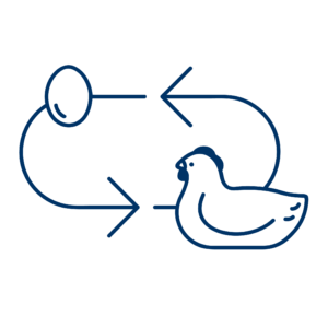 Circular Definition - Chicken and Egg